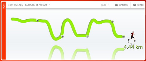 NikePlus.com run graph, US version